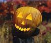 Pumpkin_002